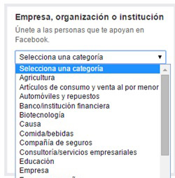 guia-pagina-facebook-seleccion-categoria