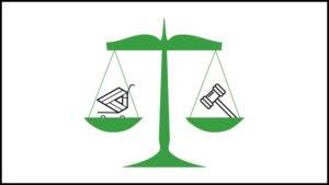 leyes para tiendas online